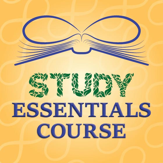 Studdy Essentials Course ENG